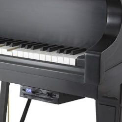 Petine Player Piano System